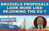 Brussels-Brexit-proposals-sound-more-like-re-joining-the-EU
